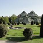 Schönbrunn palm house